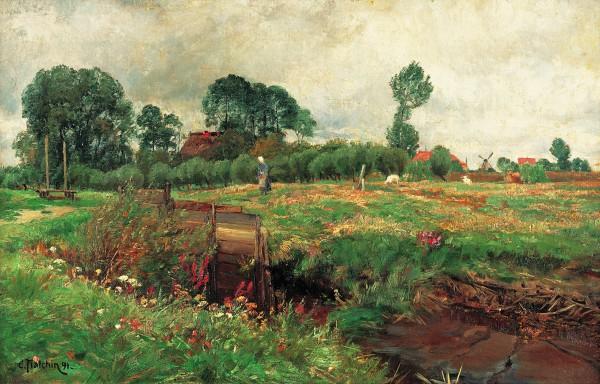 Sommerliche Landschaft in Althagen